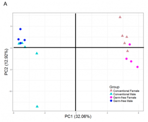 A coordinate plot showing the difference between gene expression of the lipid metabolism in males and females.